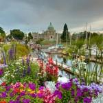 Top 5 điểm nổi bật của Đại học Victoria