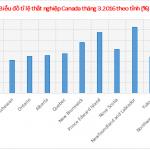 Nhìn lại bức tranh thất nghiệp Canada trước khi chọn vùng miền du học