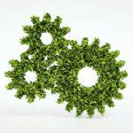 Trở thành nguồn nhân lực cấp cao với ngành học tài nguyên – môi trường